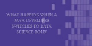 WHAT HAPPENS WHEN A JAVA DEVELOPER SWITCHES TO DATA SCIENCE ROLE?